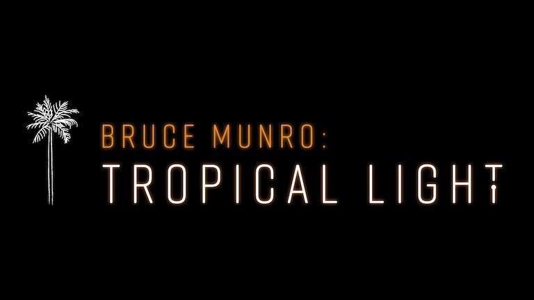 Thumbnail for Tropical Light