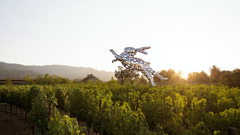 Thumbnail for Hall Wines St. Helena Tour