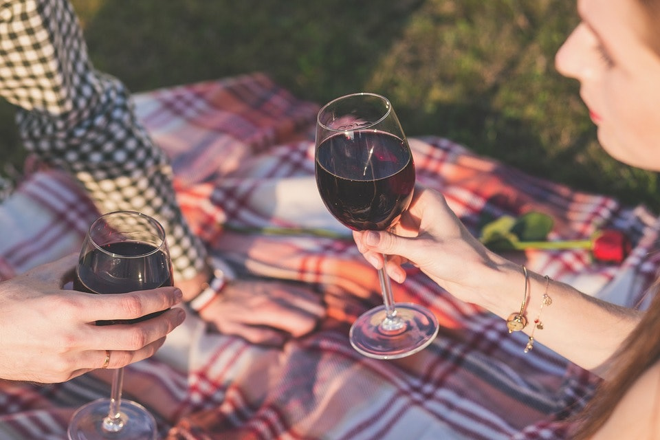 <p>Can you imagine not being able to have a picnic or go camping in New Zealand? If red imported fire ants were here, that might be a reality - their bites burn like fire!</p>