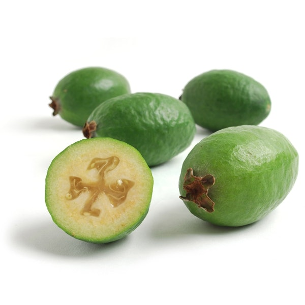 <p>Fruit full of maggots - feijoas (pictured) are susceptible.</p>