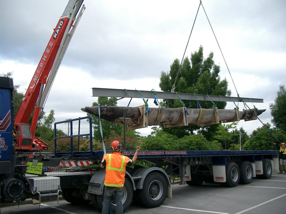 <p>The waka is carefully loaded onto the back of the truck</p>