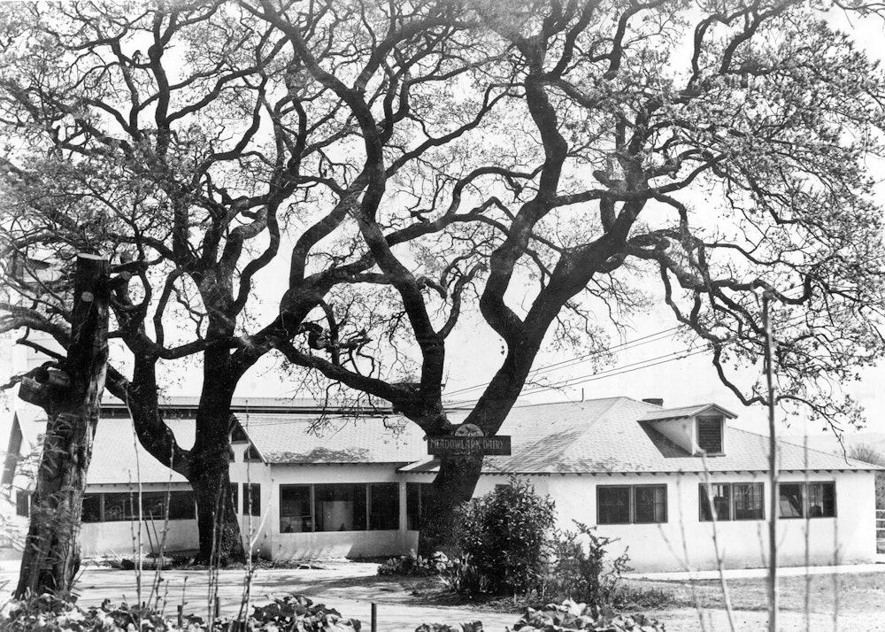 <p>Meadowlark Dairy Milking Barn, circa 1930.</p>