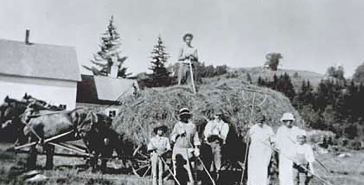 <p>Haying on Turner Hill - Vermont Folklife Center</p>