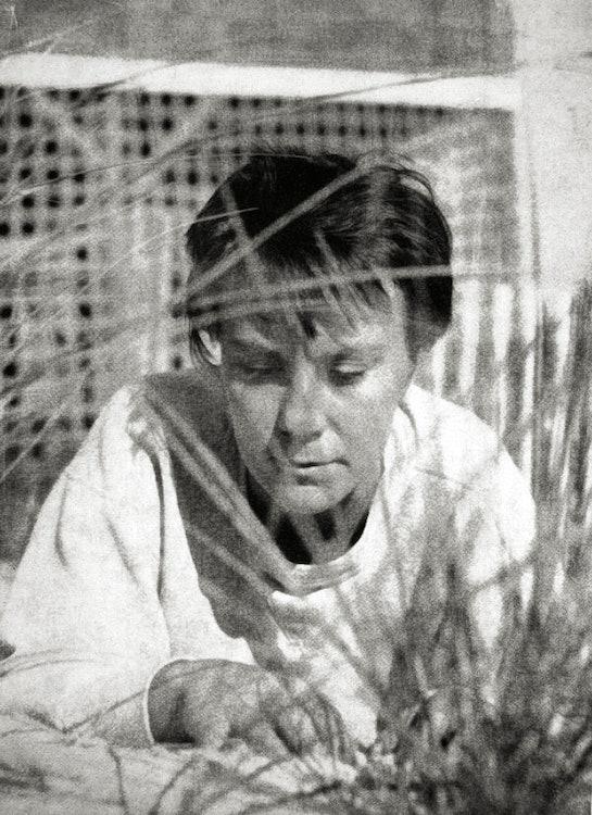 <p>Harper Lee - dust jacket of To Kill A Mockingbird - 1960</p>