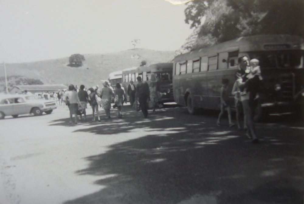 <p>Buses at Matiatia, c1960s. <em>Waiheke Historical Society collection</em></p>