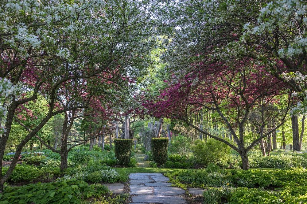 <p>Hayward Gardens photo</p>