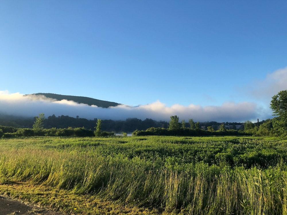 <p>Retreat Farm &amp; Meadows - mist. Courtesy of Retreat Farm</p>