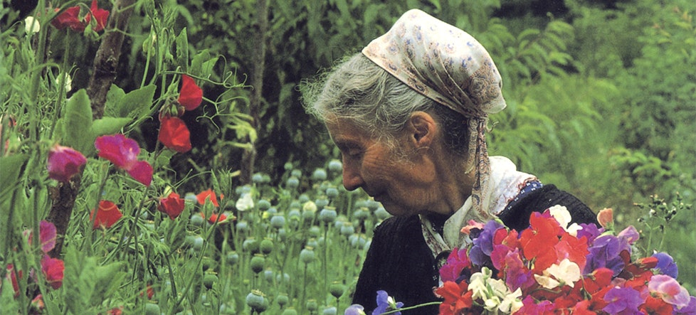 <p>Tasha Tudor - in her gardens. Courtesy photo of the Tasha Tudor Society</p>